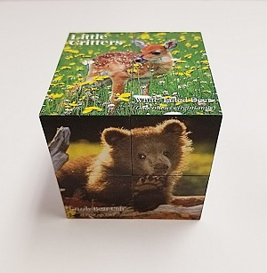 Little Critters Photo Cube