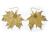 Gold Sugar Maple Leaf Earrings
