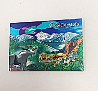 Foil Animal Colorado Magnet