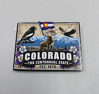 Co The Centennial State Magnet