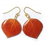 Natural Aspen Leaf French Wire Earrings